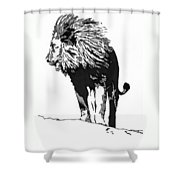 Lion 5x7 Card Shower Curtain