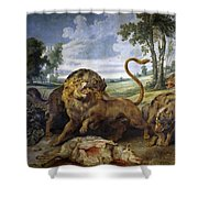 Lion And Three Wolves Shower Curtain