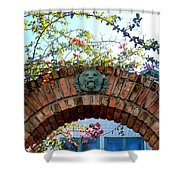Lion Arch With Flowers Shower Curtain
