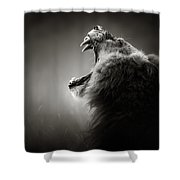 Lion Displaying Dangerous Teeth Shower Curtain