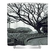 Lion Dog And Tree - Liliuokalani Park - Hawaii Shower Curtain