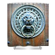 Lion Door Knocker In Norway Shower Curtain
