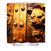 Lion Heads Gothic Door Shower Curtain