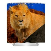 Lion In The Evening Shower Curtain