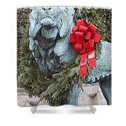 Lion In Winter Shower Curtain