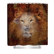 Lion Lamb Face Shower Curtain