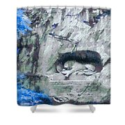 Lion Of Lucerne Shower Curtain by Dan Sproul