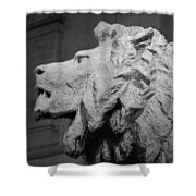 Lion Of The Art Institute Chicago B W Shower Curtain
