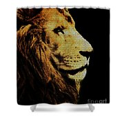 Lion Paint Shower Curtain
