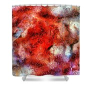 Lion Sky Shower Curtain