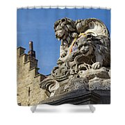 Lion Statue In Bruges Shower Curtain