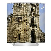 Lion Tower Shower Curtain