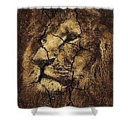 Lion -wall Art Shower Curtain