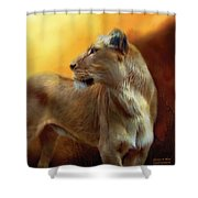 Lioness Is Near Shower Curtain