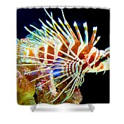 Lionfish 1 Shower Curtain