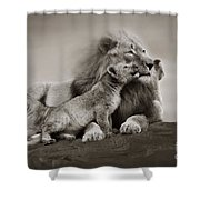 Lions In Freedom Shower Curtain
