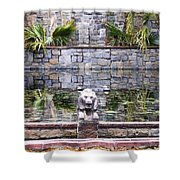 Lions In The Renaissance Court Fountain 2 Shower Curtain