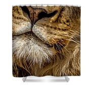 Lions Mouth 2 Shower Curtain