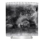 Lions Photo Art 01 Shower Curtain