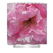 Lips Of A Rose Shower Curtain