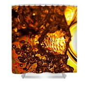 Liquid Fuel Shower Curtain