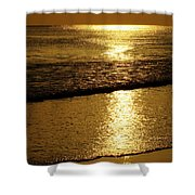 Liquid Gold Shower Curtain
