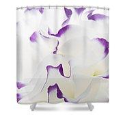 Lisianthus Frill Shower Curtain