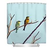 Little Bee-eaters Shower Curtain