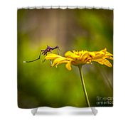 Little Biter Shower Curtain by Marvin Spates