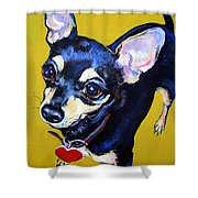 Little Bitty Chihuahua Shower Curtain