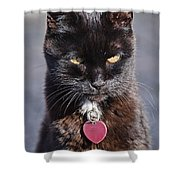 Little Black Kitty Shower Curtain