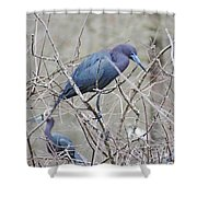Little Blue Lake Martin Louisiana Shower Curtain