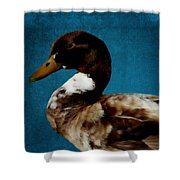 Little Brown Duck Shower Curtain