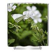 Little Butterfly Shower Curtain