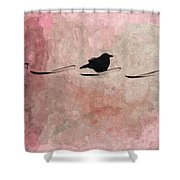 Little Crow In The Pink Shower Curtain