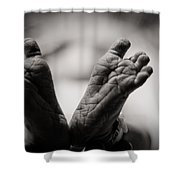 Little Feet Shower Curtain
