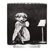 Little Fiddler Shower Curtain by Aged Pixel