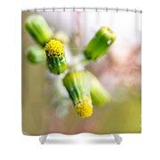 Little Flower 03 Shower Curtain