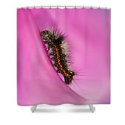 Little Furry Friend Shower Curtain