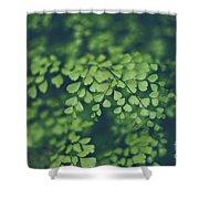 Little Green Leaves Shower Curtain