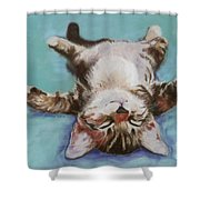Little Napper  Shower Curtain by Pat Saunders-White