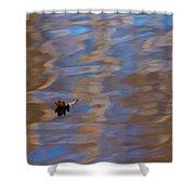 Little Navy - Santa Maria - Featured 2 Shower Curtain