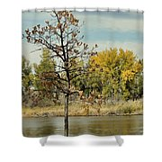 Little Oak Shower Curtain