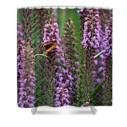 Little Orange And Black Butterfly Shower Curtain