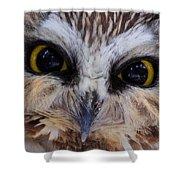 Little Owls Shower Curtain
