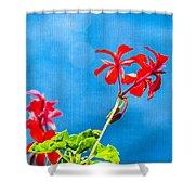Little Paradise Shower Curtain