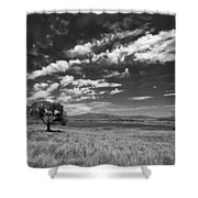 Little Prarie Big Sky - Black And White Shower Curtain