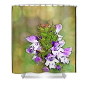 Little Purple Mint Shower Curtain