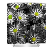 Little Rays Of Sunshine Shower Curtain