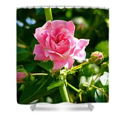 Little Rose Doll Shower Curtain